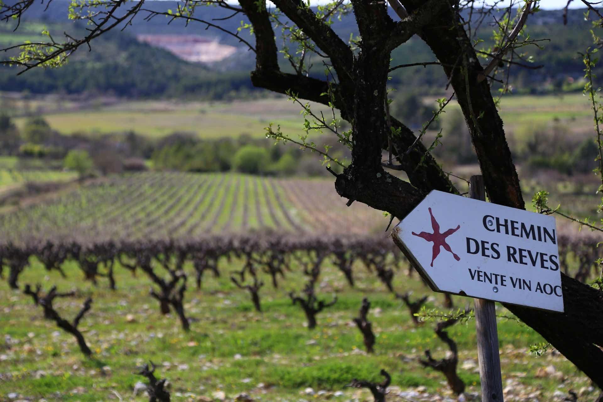 Domaine du Chemin des Rêves - アペロ ワインバー / apéro WINEBAR - vins et petits plats français - Minami Aoyama Tokyo