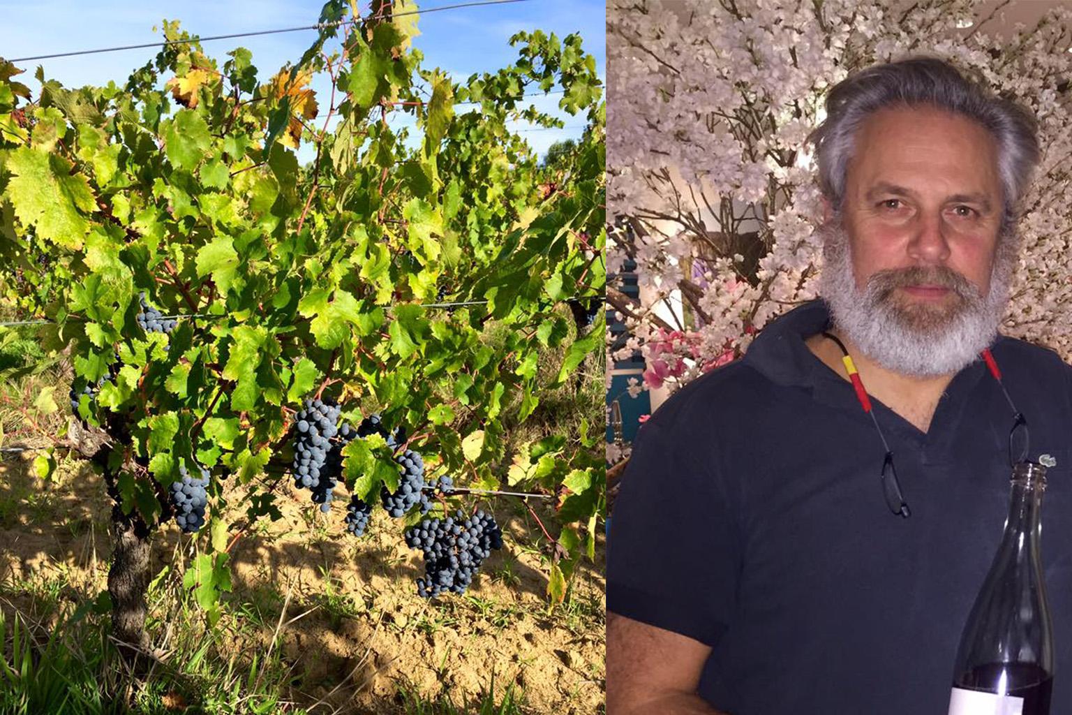 Ormiale - アペロ ワインバー / apéro WINEBAR - vins et petits plats français - Minami Aoyama Tokyo