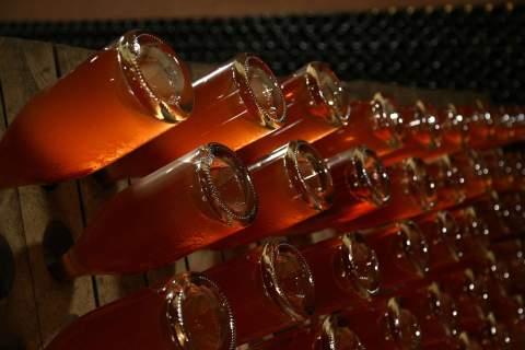 Domaine Drappier - アペロ ワインバー オーガニックワインxフランス家庭料理 - 東京都港区南青山3-4-6 / apéro WINEBAR - vins et petits plats français