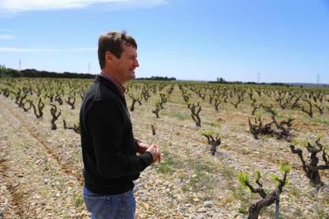 Domaine des Amadieu - アペロ ワインバー オーガニックワインxフランス家庭料理 - 東京都港区南青山3-4-6 / apéro WINEBAR - vins et petits plats français