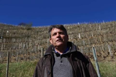 Domaine Guy Farge - アペロ ワインバー オーガニックワインxフランス家庭料理 - 東京都港区南青山3-4-6 / apéro WINEBAR - vins et petits plats français