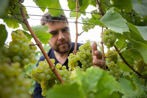 Champagne Barrat Masson - アペロ ワインバー オーガニックワインxフランス家庭料理 - 東京都港区南青山3-4-6 / apéro WINEBAR - vins et petits plats français
