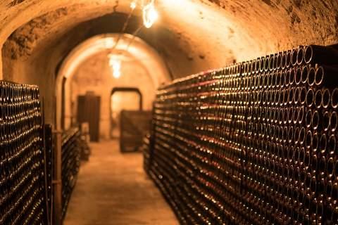 Champagne Pascal Mazet - アペロ ワインバー オーガニックワインxフランス家庭料理 - 東京都港区南青山3-4-6 / apéro WINEBAR - vins et petits plats français