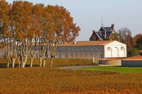 Château Mouton Rothschild - アペロ ワインバー オーガニックワインxフランス家庭料理 - 東京都港区南青山3-4-6 / apéro WINEBAR - vins et petits plats français