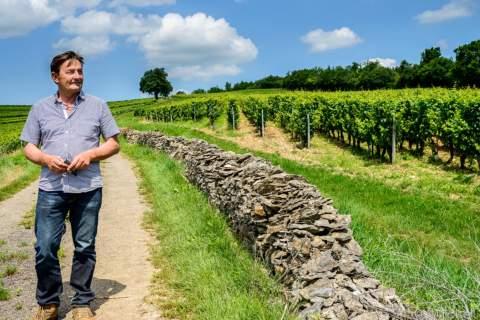 Domaine des Comtes Lafon - アペロ ワインバー オーガニックワインxフランス家庭料理 - 東京都港区南青山3-4-6 / apéro WINEBAR - vins et petits plats français
