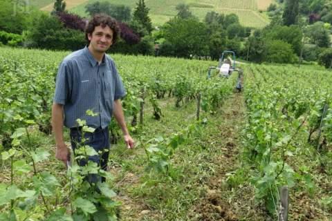 Domaine des Poncétys - アペロ ワインバー オーガニックワインxフランス家庭料理 - 東京都港区南青山3-4-6 / apéro WINEBAR - vins et petits plats français