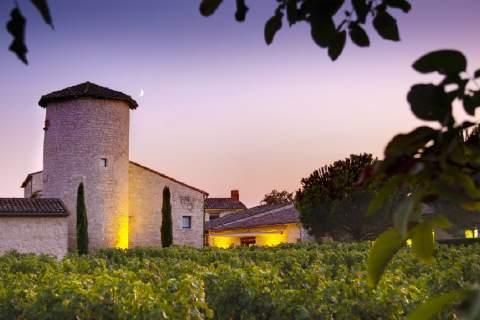 Château Salettes - アペロ ワインバー オーガニックワインxフランス家庭料理 - 東京都港区南青山3-4-6 / apéro WINEBAR - vins et petits plats français