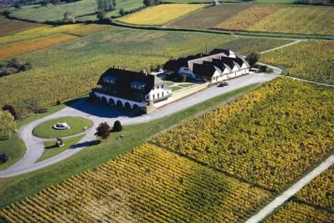 Domaine de la Pinte  - アペロ ワインバー オーガニックワインxフランス家庭料理 - 東京都港区南青山3-4-6 / apéro WINEBAR - vins et petits plats français