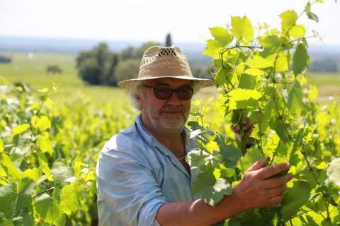 Domaine Marc Delienne - アペロ ワインバー オーガニックワインxフランス家庭料理 - 東京都港区南青山3-4-6 / apéro WINEBAR - vins et petits plats français