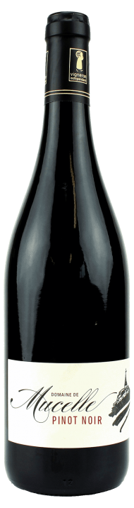 Pinot Noir - アペロ ワインバー / オーガニックワインxフランス家庭料理 - 東京都港区南青山3-4-6 / apéro WINEBAR - vins et petits plats français - 2016