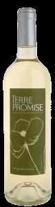 Terre Promise Blanc - アペロ ワインバー / オーガニックワインxフランス家庭料理 - 東京都港区南青山3-4-6 / apéro WINEBAR - vins et petits plats français - 2016