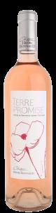 Terre Promise Rosé - アペロ ワインバー / オーガニックワインxフランス家庭料理 - 東京都港区南青山3-4-6 / apéro WINEBAR - vins et petits plats français - 2016